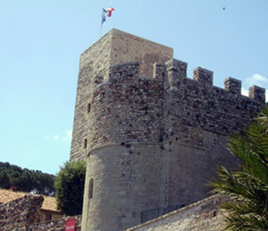 Museo de la Castre